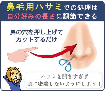 鼻毛用ハサミは、自分好みの長さに調整できます。鼻の穴を押し上げながらハサミを開きすぎないようにカットするのがポイント。