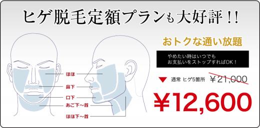 メンズシュシュの髭脱毛の体験可能部位