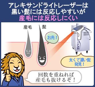 アレキサンドライトレーザーは産毛にはあまり反応しないので、産毛の脱毛には回数が必要
