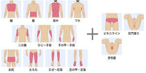 メンズリゼクリニックの全身脱毛とVIOの施術範囲