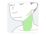 【湘南美容外科クリニック】首の範囲