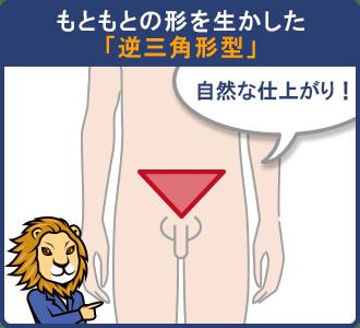 男の陰毛の形「逆三角形型」