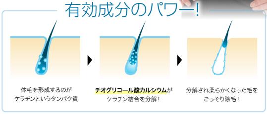 MONOVOヘアリムーバークリームのチオグリコール酸カルシウムが毛を溶かす仕組み